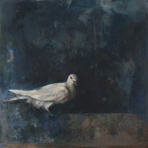 La colombe 60x60