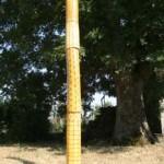 11-totem 15dia 250cm Haut